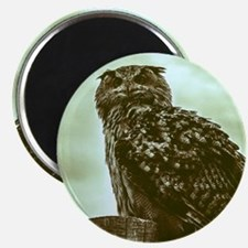 Vintage, beautiful owl Magnets