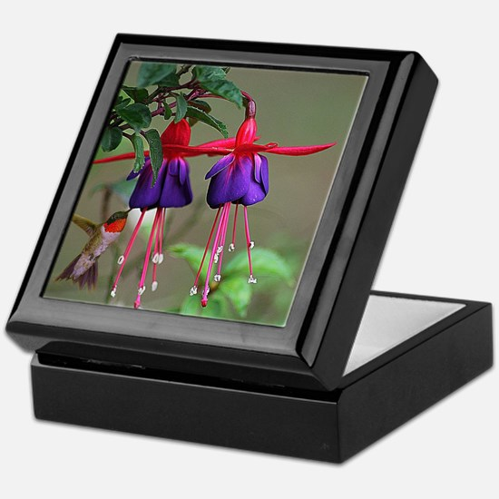 Fuchsia and Hummingbird  Keepsake Box