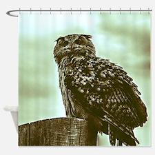 Vintage, beautiful owl Shower Curtain