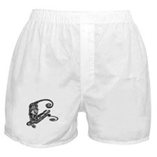 Simian Skateboarder Boxer Shorts