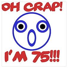 Funny 75th Birthday Poster