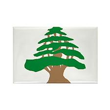 Cedar Tree Rectangle Magnet