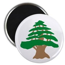 Cedar Tree Magnet