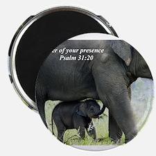 Cute Elephant Magnet