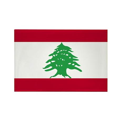 Flag Rectangle Magnet (10 pack)