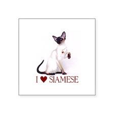 """Cute Siamese cat Square Sticker 3"""" x 3"""""""