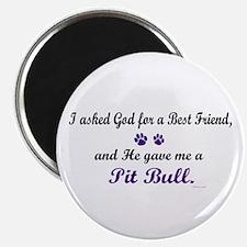 God Gave Me A Pit Bull Magnet
