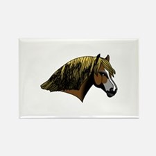 Welsh Pony #2 Head Magnets