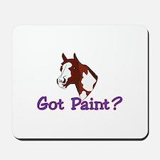 Got Paint? Mousepad