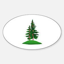 Evergreens Decal