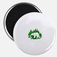 Bear Silhouette Magnets