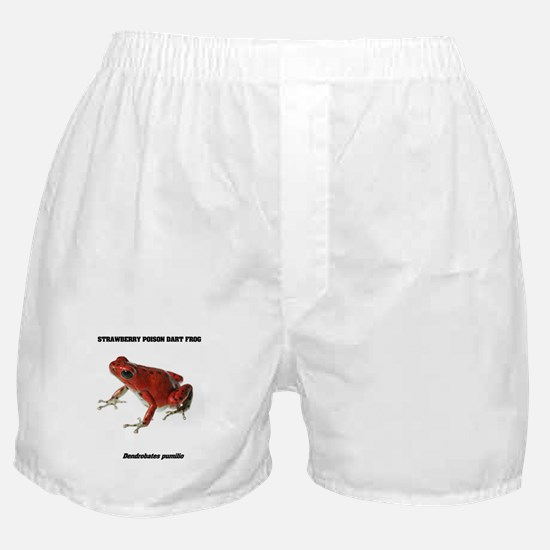 FROGS - STRAWBERRY POISON DART FROG! Boxer Shorts