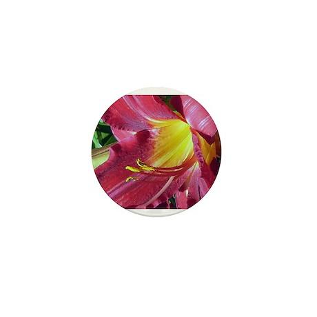 Crimson Pirate Daylily #1 Mini Button