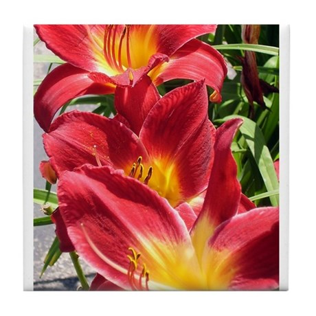 Crimson Pirate Daylily #2 Tile Coaster