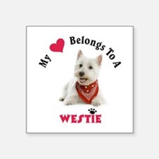 My Heart Belongs To A Westie Sticker