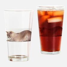 Lilac Burmese Cat Drinking Glass