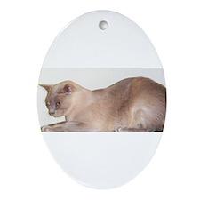 Lilac Burmese Cat Ornament (Oval)