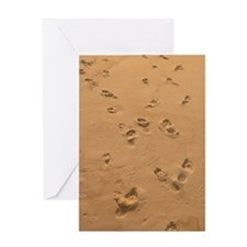 Footprints Greeting Cards