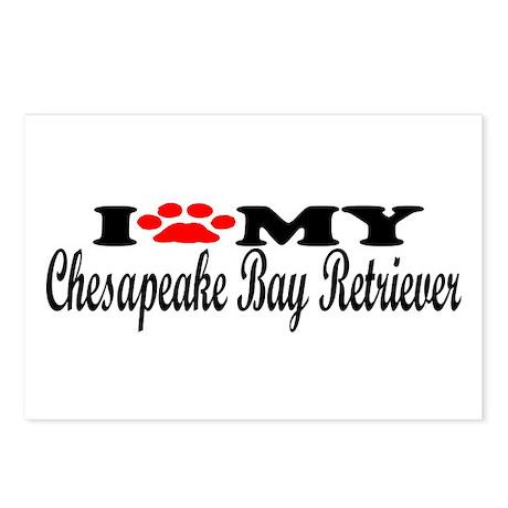 Chesapeake Bay Retriever - I Love My Postcards (Pa
