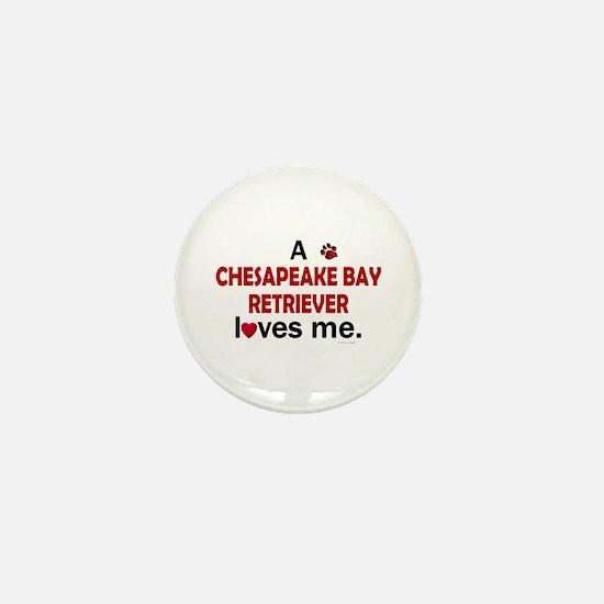 A Chesapeake Loves Me Mini Button