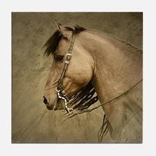 Kiger Stallion Tile Coaster