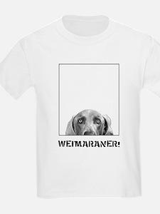 Weimaraner In A Box! T-Shirt
