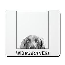 Weimaraner In A Box! Mousepad