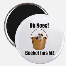 Bucket has lolcat Magnet