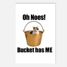 Bucket has lolcat Postcards (Package of 8)
