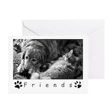 Golden Retriever & Cat Greeting Cards (Total 6)