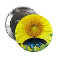 Sunflower Butterfly Button