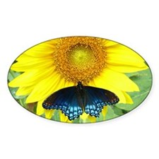 Sunflower Butterfly Oval Decal