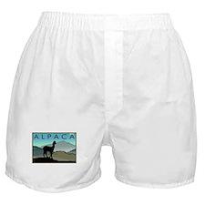 Blue Hills Alpaca Boxer Shorts