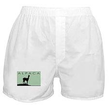 Alpaca Black on Mint Boxer Shorts