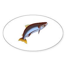 King Salmon Decal