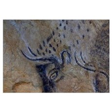french pyrenees cave paintings Poster