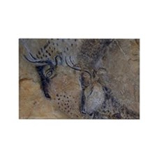 french pyrenees cave paintings Rectangle Magnet