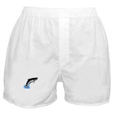 King Salmon Boxer Shorts