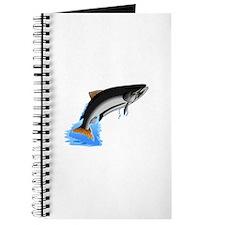 King Salmon Journal