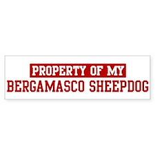 Property of Bergamasco Sheepd Bumper Bumper Bumper Sticker