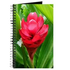 Bloom Where You're Planted Journal