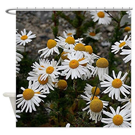 Yellow Amp White Daisies Shower Curtain By ADMIN CP59183003