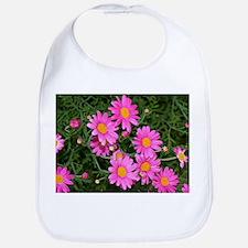 Pink & yellow daisies flowering in garden Bib