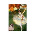 Dancer 1 & fawn Pug Rectangle Magnet