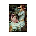 Ophelia / Fawn Pug Rectangle Magnet