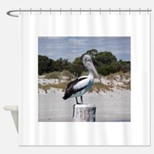 Pelican Standing on Watch Shower Curtain