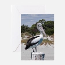 Pelican Standing on Watch Greeting Cards