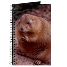 Ground Hog Journal
