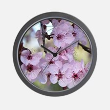 Cherry blossoms in spring time Wall Clock