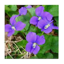 Are Violets Blue? Tile Coaster